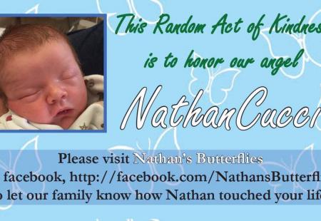 Nathan's Butterflies