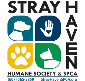 stray haven humane society